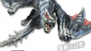 【MHX】(ライトボウガン)(2つ名武器)鷹の目用のスキル構成
